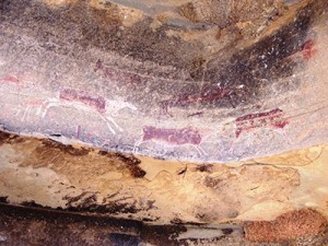 Bushman Paintings