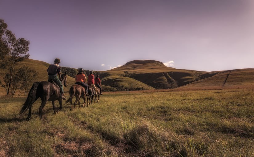 Northern Drakensberg Horse Trails