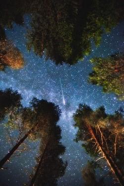 Stargazing in the Drakensberg - 2